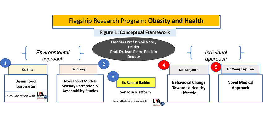 Flagship research program for obesity and health